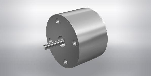voice coil motor (VCM)
